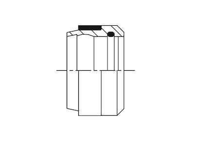 Bague pour raccord à bague O'ring, série allemande légère photo du produit