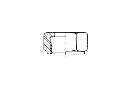 Lagedruk moer met inch draad - voor brandstof pilaar of corresponding body size product photo