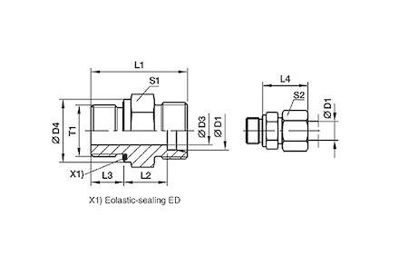 Snijringverbinding 24° - DIN 2353 - inschroefkoppeling BSP met elastomeer afdichting - serie Licht product photo